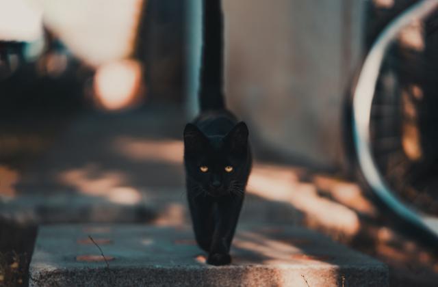 post por que nos afectan psicologicamente las supersticiones
